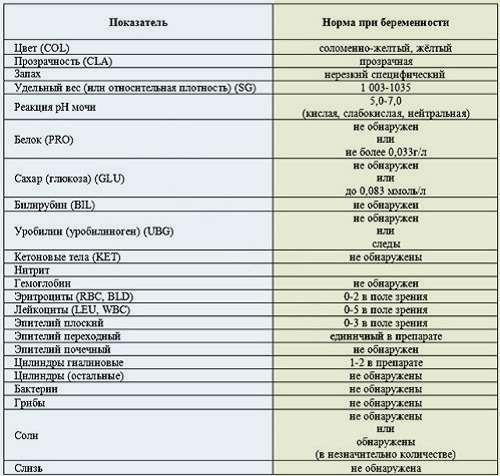Показатели анализа мочи расшифровка у беременных 966