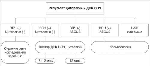 Алгоритмы диагностики вируса папилломы человека
